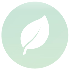 https://www.cefa.com.au/wp-content/uploads/2019/07/Why_Page_Slicing_1_Glean_Leaf_ICON.png